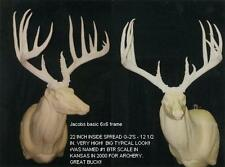 """Unfinished Jacobs Whitetail replica Antlers over 200"""" B&C ANTLER TAXIDERMY"""