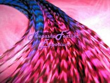 feather hair extensions X Long grizzly Hot pink royal blue 2 tone beads