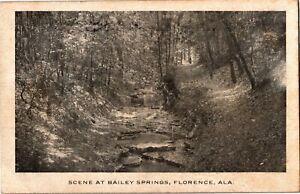 Scene at Bailey Springs, Florence AL c1908 Vintage Postcard U33