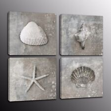 Wall Art Canvas Picture Print Sea Shells And Starfish Home Decor 4pcs
