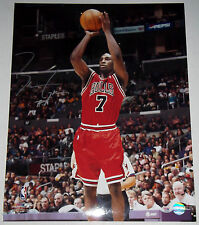 BEN GORDON Signed 16x20 Rookie Chicago Bulls Photo Auto w/ PSA/DNA RookieGraph