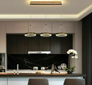 Hanging Ceiling Pendant Lights LED Acrylic Iron Silicon Modern Lamps Home Decors