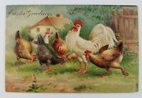 Postcard Easter Greetings Chickens on a Farm Rooster
