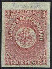 NEWFOUNDLAND 1862 FLOWER 4D IMPERF