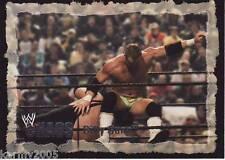 2004 Fleer WWE Chaos #37 Billy Gunn near mint