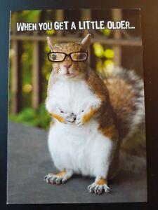 Funny Men's Birthday Card