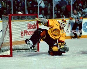 NHL 1989 Vancouver Canucks Goalie Kirk McLean Leg Save Color 8 X 10 Photo Pic