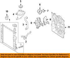 Mercedes MERCEDES-BENZ OEM 07-12 GL450 Radiator Coolant-Lower Hose 1645004875