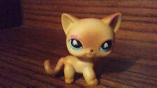 Messiest Cream & Tan Cat Littlest Pet Shop LPS #816  toys Kids