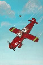 LE #2 4X6 POSTCARD RYTA CLASSIC PROPELLER AIRPLANE PLANE PILOT ART CORGI DOG PET
