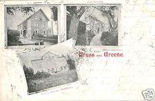 17272/ Foto AK, Gruss aus Greene, Villa v. Dehnen, Schotte, Zimmer, 1901