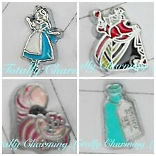 Alice In Wonderland Theme Set Floating Charms For Living Owl Glass Memory Locket