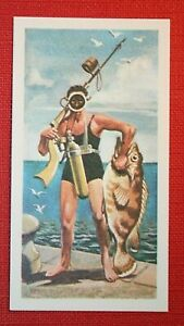 Nautilus Spear Fishing Gun  Early Scuba Diving Gear  Superb Illustrated Card