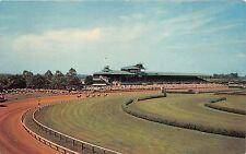 Stanton DE~Delaware Park-Crowd Watching Horse Race~5 Horses on Track~1950s Pc