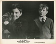 Jean Pierre Leaud Siamese Cat Original Vintage 1959 The 400 Blows Truffaut Photo