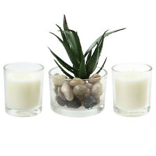Set Of 2 Lemon Grass Scented Candles And Decorative Cactus Home Furniture Gift