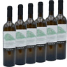 🥂VINO BIANCO Falanghina beneventano IGP x 6 bottiglie 0.75ml 👌📦📦