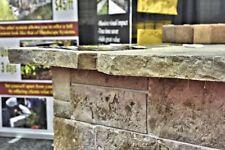 Stone Free Form Concrete Countertop Edge Form