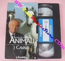 VHS film VIAGGIO NEL MONDO DEGLI ANIMALI 7 I cavalli PIERO ANGELA (F11) no dvd
