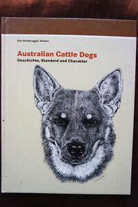 Australian Cattle Dogs Geschichte Standard Charakter Holderegger Walser Gebun.
