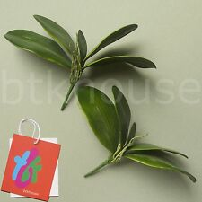 2 x Artificial Moth Orchid Leaves Foliage Bush Potted Plant Arrangement (GN)