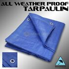 8x10' ft Heavy Duty Canopy Poly Tarp Cover Tent Cover Reinforced Tarpaulin Blue