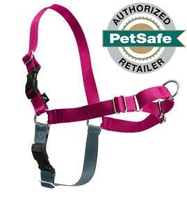 PetSafe/Premier Pet Easy Walk Harness Small/Medium Raspberry/Grey