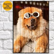 Personalised pet memorial plaque memorial gift cat dog pet photo frame gifts