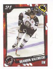2007-08 Las Vegas Wranglers (ECHL) Brandon Kaleniecki