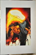 Street Fighter - FEI LONG LIMITED EDITION PRINT Capcom Offset Arnold Tsang art
