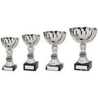 PRESENTATION CUP - Silver Multi Sport Bowl * FREE LUXURY ENGRAVING * - TR18519