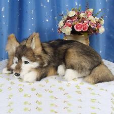 simulation lying husky toy polyethylene&furs dog model gift about 36x25x14cm