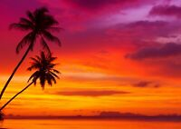 Beautiful Tropical Sunset Poster Print Size A4 / A3 Nature Poster Gift #8269