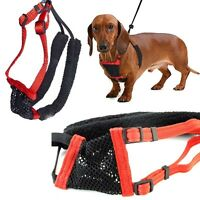 Hot Anti-Pull Breathable Mesh Puppy Dog Pet Harness Vest No Pull Control Straps