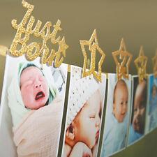 12 Month Photo Banner Milestone Photo Banner for First Birthday Decoration