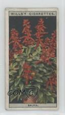 1925 Wills Flower Culture in Pots Tobacco Base #42 Salvia Non-Sports Card 1md