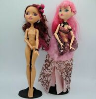 Ever After High Lot Of Two Dolls Briar Beauty 1st Chapter CA Cupid Thronecoming