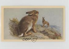 1983 Grandee British Mammals Mountain Hare #25 2u1
