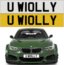YOU WOLLY TWAT SILLY STUPID DAFT RUDE CHEEKY NAUGHTY PRIVATE NUMBER PLATE