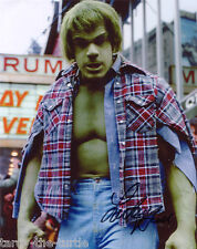 Lou Ferrigno As TV's The Incredible Hulk  Autograph Reprint King of Queens