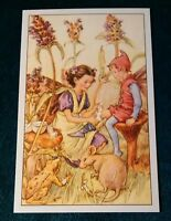 CICELY MARY BARKER FLOWER FAIRIES POSTCARD, THE SELF-HEAL FAIRY, OF THE WAYSIDE