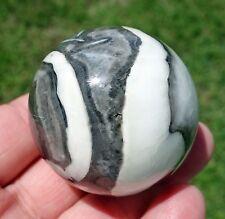 Wonderful Shell Fossil Jasper Quartz Matrix Crystal Healing Sphere Ball Rock
