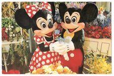 Walt Disney World Main Street Flower Market Vintage 4x6 Postcard, Nov17