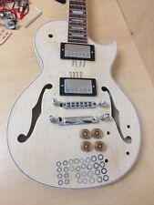 Complete NO-SOLDER DIY Kit-LP Style Set Neck,Semi-Hollow Body Electric Guitar