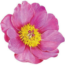 Round Placemats Vinyl Coated Hard Table Mats for Round Tables Set 4 Peony
