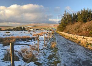 Snowy Great Mis Tor Dartmoor Devon Photo Art Print Canvas (UK)