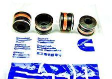 4  CUMMINS B SERIES ENGINE 3901097 NOS VALVE STEM SEAL BLACK SYNTHETIC RUBBER