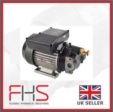 Electric Oil Transfer Pump - Piusi Vane Pump 110V