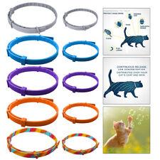 Hund Katze Anti Floh und Tick Kragen Entfernung Flea Flea Tick Kragen