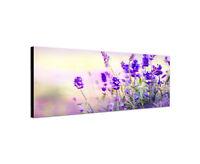 120x40cm Wandbild Leinwand Panorama Lavendel Lila Blumen Sinus Art Keilrahmen